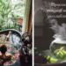 """Юлия Бойко. Женские практики. Практика """"Приятное женское расслабление""""."""